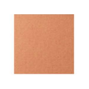 11495 (25) Бумага для пастели, охра, 50*65см